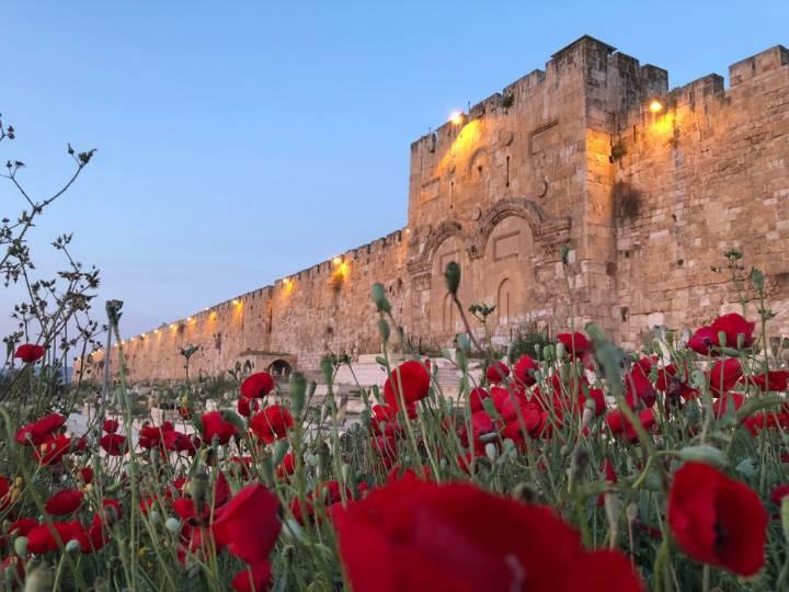 דרושים בירושלים