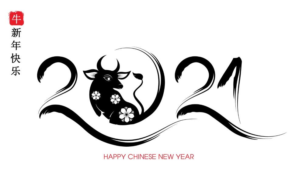 תחזית אסטרולוגית סינית 2021